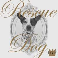 Train - rescue dog1